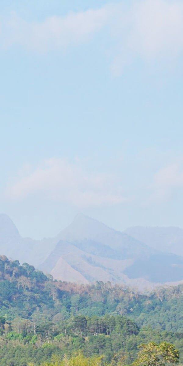 Villa puncak view gunung